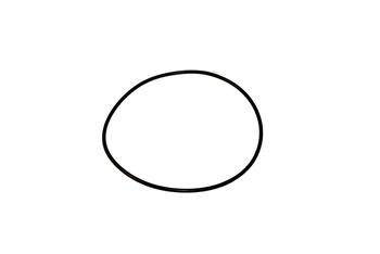 O-Ring, RWP Impeller